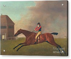 Baronet With Sam Chifney Up Acrylic Print by George Stubbs