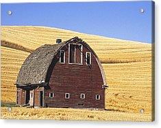 Basic Palouse Barn Acrylic Print by Latah Trail Foundation