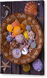 Basket Full Of Seashells Acrylic Print by Garry Gay