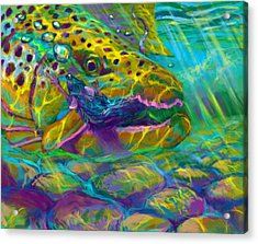 Bathing The Mouse  Acrylic Print by Yusniel Santos