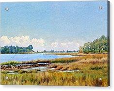 Batiquitos Lagoon Marshland Acrylic Print by Mary Helmreich