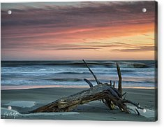 Battered Driftwood Acrylic Print by Phill Doherty