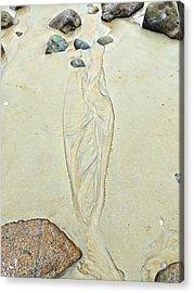 Beach Sand 4   Acrylic Print by Marcia Lee Jones