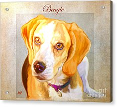 Beagle Art Acrylic Print by Iain McDonald