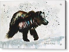 Bear Hunter Acrylic Print by Anderson R Moore