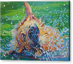 Bear Acrylic Print by Kimberly Santini