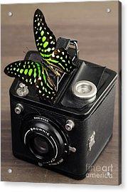 Beautiful Butterfly On A Kodak Brownie Camera Acrylic Print by Edward Fielding