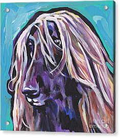 Beautiful Hound Acrylic Print by Lea S