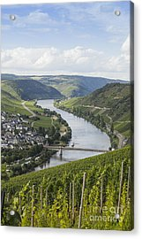 Beautiful Mosel River Acrylic Print by Patricia Hofmeester