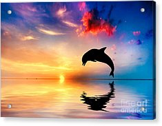 Beautiful Ocean And Sunset With Dolphin Jumping Acrylic Print by Michal Bednarek