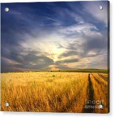 Beautiful Sunrise Pictures Acrylic Print by Boon Mee