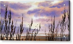 Beautiful World Acrylic Print by James Williamson