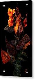 Beauty In The Dark Acrylic Print by Yolanda Raker