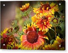 Beauty In The Garden Acrylic Print by Lynn Bauer