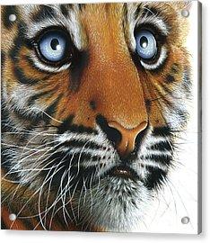 Beauty Of My Mother's Eyes Acrylic Print by Jurek Zamoyski