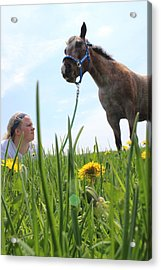 Beauty Acrylic Print by Tiffany Erdman