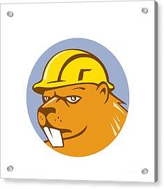 Beaver Construction Worker Circle Cartoon  Acrylic Print by Aloysius Patrimonio