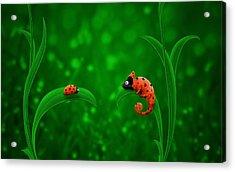 Beetle Chameleon Acrylic Print by Gianfranco Weiss