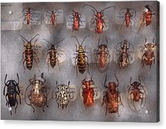 Beetles - The Usual Suspects  Acrylic Print by Mike Savad