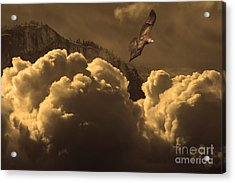 Before Memory . I Have Soared With The Hawk Acrylic Print by Wingsdomain Art and Photography