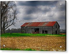 Before The Storm Acrylic Print by Mary Timman