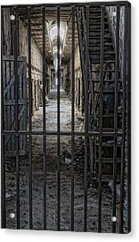 Behind Bars Acrylic Print by Don Schroder