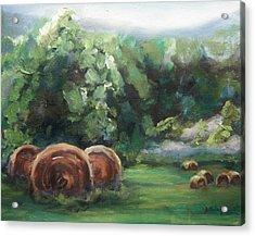 Beliveau Hay Rolls Acrylic Print by Donna Tuten