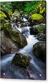 Below Rainier Acrylic Print by Chad Dutson
