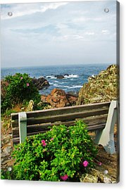 Marginal Way Acrylic Print by Diane Valliere