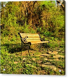 Bench At The Pond  Acrylic Print by Andrew Martin