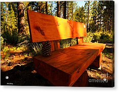 Bench In The Woods Acrylic Print by Cheryl Young