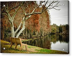 Bench With A View Acrylic Print by Carolyn Marshall