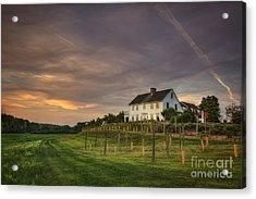 Beneath An Evening Sky Acrylic Print by Evelina Kremsdorf