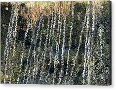 Beneath The Reflection Acrylic Print by Roxy Hurtubise