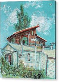 Berkeley Neighbor Houses On A Sunny Day Acrylic Print by Asha Carolyn Young