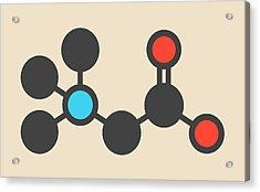 Beta-alanine Molecule Acrylic Print by Molekuul
