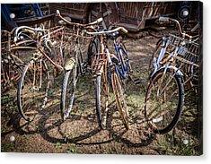 Bevy Of Bicycles Acrylic Print by Debra and Dave Vanderlaan