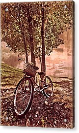 Bicycle In The Park Acrylic Print by Debra and Dave Vanderlaan