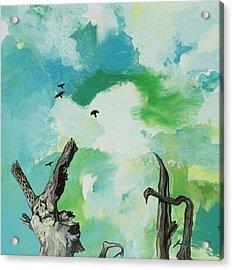 Big Sky Acrylic Print by Joseph Demaree