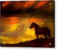 Big Sky Acrylic Print by Judie White