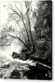 Big Spring In B And W Acrylic Print by Marty Koch