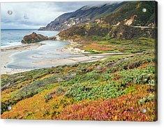 Big Sur California In Autumn Acrylic Print by Pierre Leclerc Photography