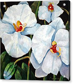 Big White Orchids - Floral Art By Betty Cummings Acrylic Print by Sharon Cummings