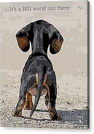 Big World Acrylic Print by Judy Wood