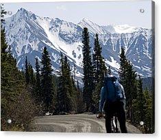Biking Denali Style Acrylic Print by Tara Lynn