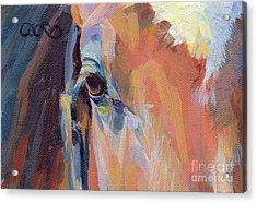 Billy Acrylic Print by Kimberly Santini