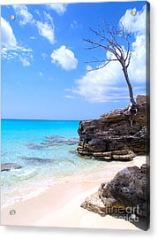 Bimini Beach Acrylic Print by Carey Chen