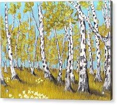 Birch Grove Acrylic Print by Anastasiya Malakhova