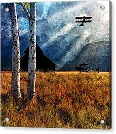Birch Trees And Biplanes  Acrylic Print by Bob Orsillo