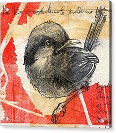 Bird 04 Acrylic Print by Marco Sivieri